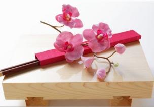 優秀教案 | 中班社會領域活動《我會使用筷子》