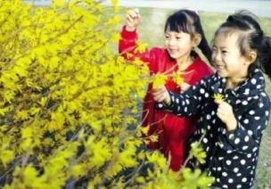 优秀教案 | 小班社会领域活动《春天来啦》