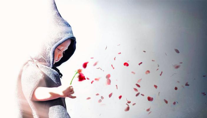 纯洁之花为何结出丑陋之果?写在虐童事件之后