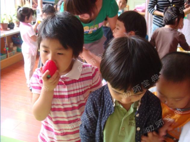 小班半日活动计划——健康宝宝(含主题环创和活动反思)