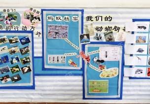 主题墙 | 幼儿园开展频率超高的主题,这8款主题墙你一定做过
