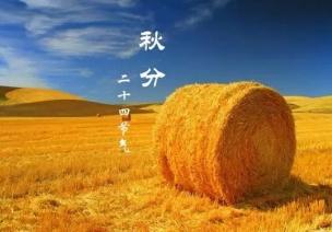 二十四節氣第16節 | 秋分:丹桂飄香,蟹肥菊黃