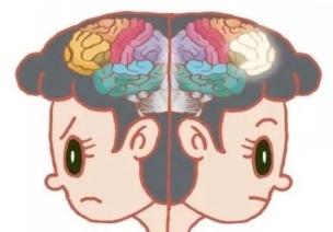 为啥小班孩子经常控几不住他记几?原来他们大脑跟我们不一样!