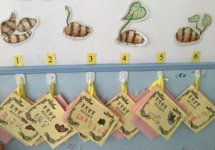 自然角指导 | 让孩子爱上植物角的7个策略