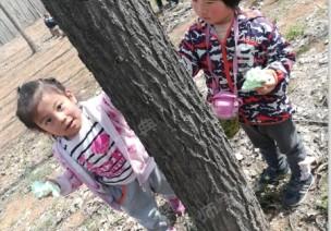 户外自然课程 | 《神奇的树皮》