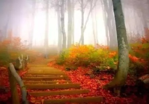 秋季儿歌 | 小中大班秋季儿歌大全,是时候关注一下了!