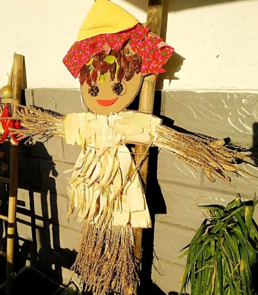 教案   大班艺术领域美术活动《秋天的颜色》