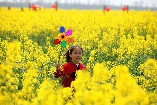 春季手工 | 吱呦呦的大风车,旋转在孩子们的童年里!