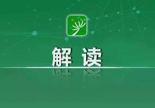 教育部解读《中国教育现代化2035》和《实施方案》