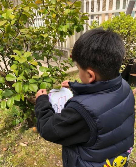 植树节 | 阳春三月天,造绿正当时