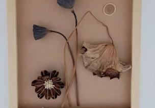 自然风环创   自然与美的完美融合,打造走廊秘境