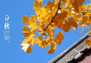 立秋节气活动 | 这10个有趣的活动,带孩子了解时令的秘密