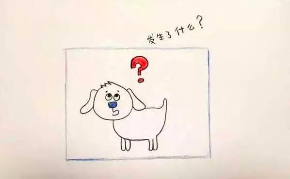 电击狗的实验——习得性无助