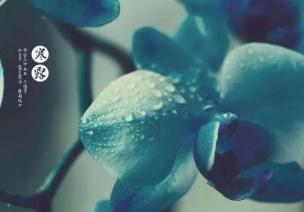寒露節氣活動 | 這8個有趣的節氣活動,帶你走進寒露的美
