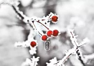 冬至節氣活動 | 這9個超贊節氣活動,帶你追尋冬的腳步