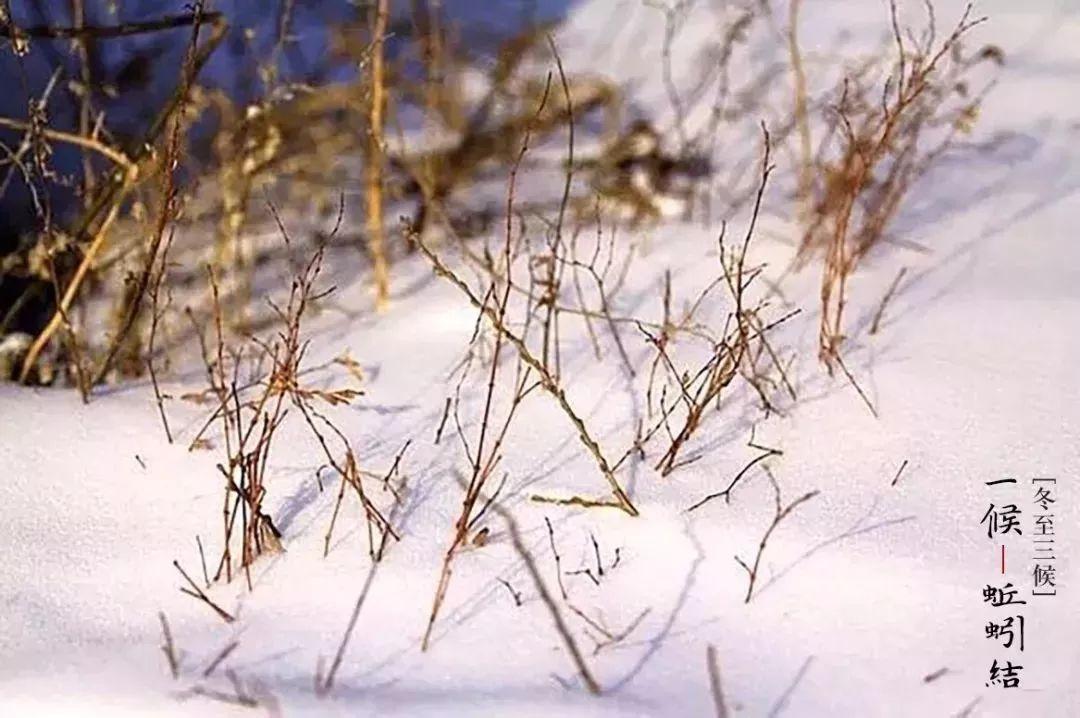 冬至节气活动 | 这9个超赞节气活动,带你追寻冬的脚步