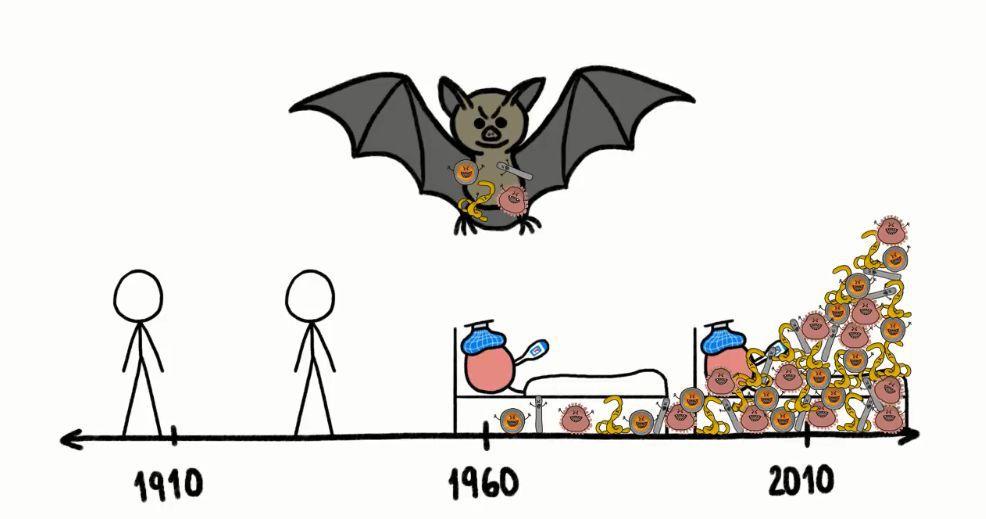 疫情当下|谈谈应该如何给幼儿上好自然生命教育课堂