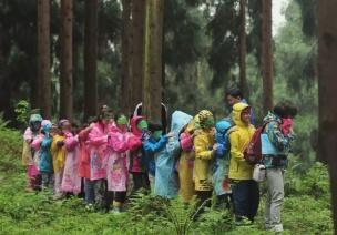 疫情過后帶孩子從圍墻里走出去,重新認識自然與生命