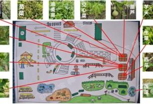 """探索本土資源園本的教研,以""""農作物資源的有效開發與利用""""為例"""