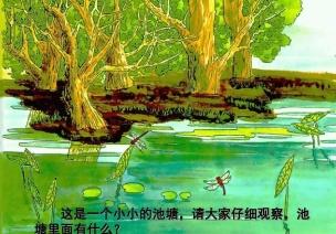 中班语言领域活动 |《小池》中华民族文化从娃娃开始传承