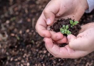 """做自然环境教育,不是让孩子喊""""保护环境""""的口号!"""